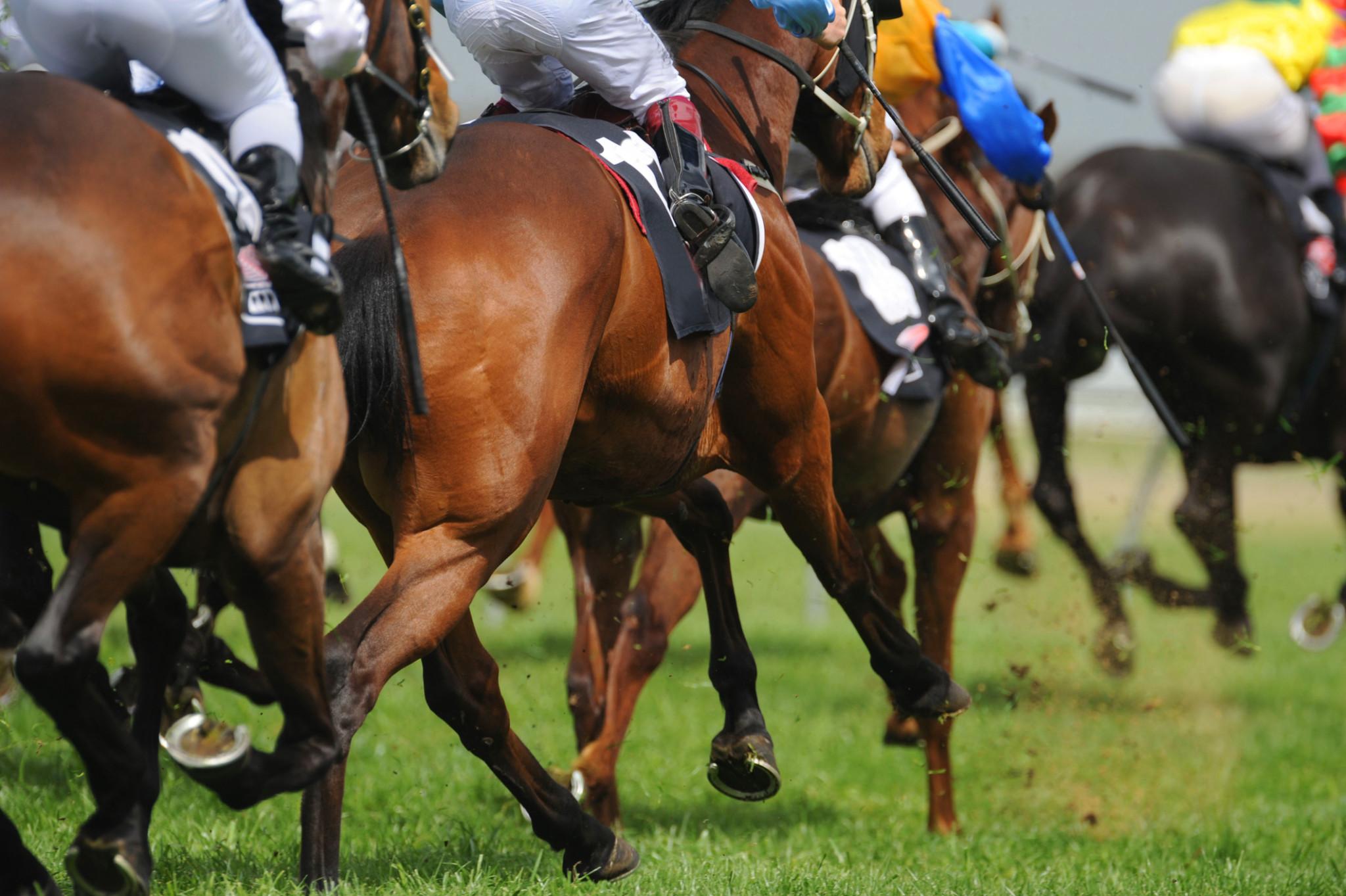 Horseracing image
